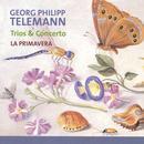 Telemann: Trios & Concerto thumbnail