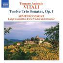 Tomaso Vitali: Twelve Trio Sonatas, Op. 1 thumbnail