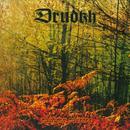 Autumn Aurora (Dig) thumbnail