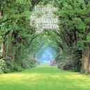 In The Enchanted Garden thumbnail