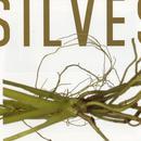 Silvestre thumbnail