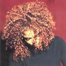 The Velvet Rope thumbnail