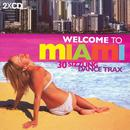 Welcome To Miami: Ibiza World Tour 04 thumbnail