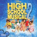 High School Musical 2 thumbnail