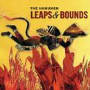 Leaps & Bounds thumbnail