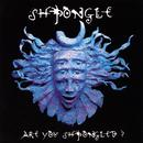 Are You Shpongled? thumbnail