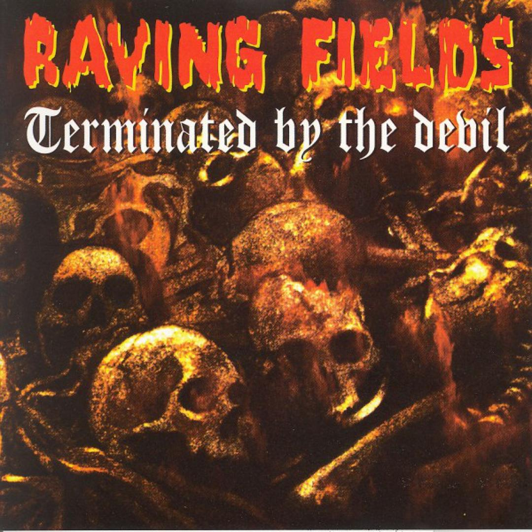 Voice Of The Devil (Raving Fileds Terminated By The Devil